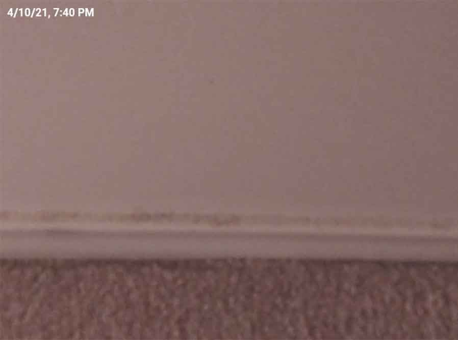 A blurry photo of some dust on a floor board at this property -- used as proof that the renter did not clean the home properly.