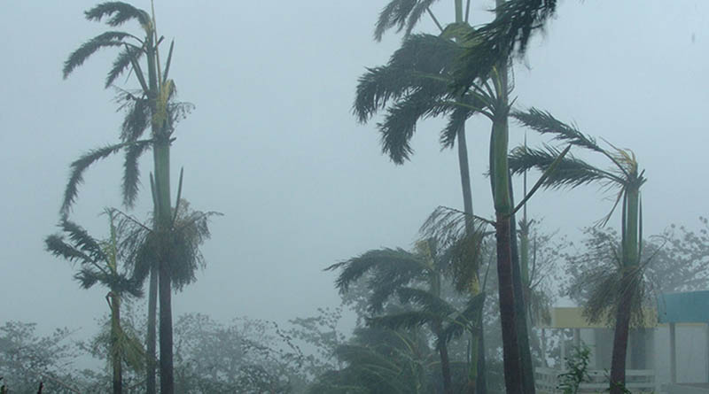 The hurricane causes canceled flights