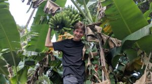 Taking a fruit picking vacation with your kids
