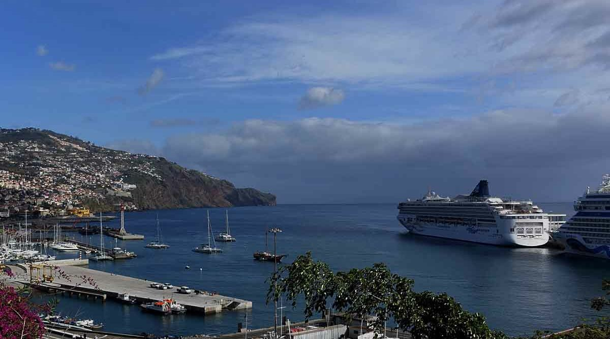 If an agent cancels your cruise, what now?