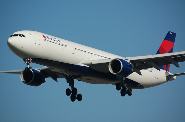 Hey Delta, where are my vouchers? Delta, are you there?