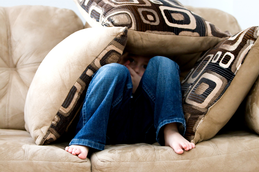 couch, sofa, living, room, pillow, hide
