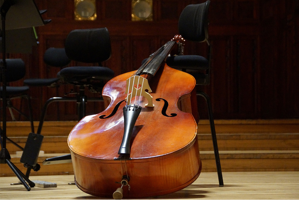 Why does the bag fee for my son's musical instrument cost more than his ticket?