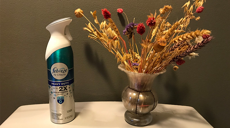 She found a can of Febreze in her Airbnb rental. Now she wants a refund