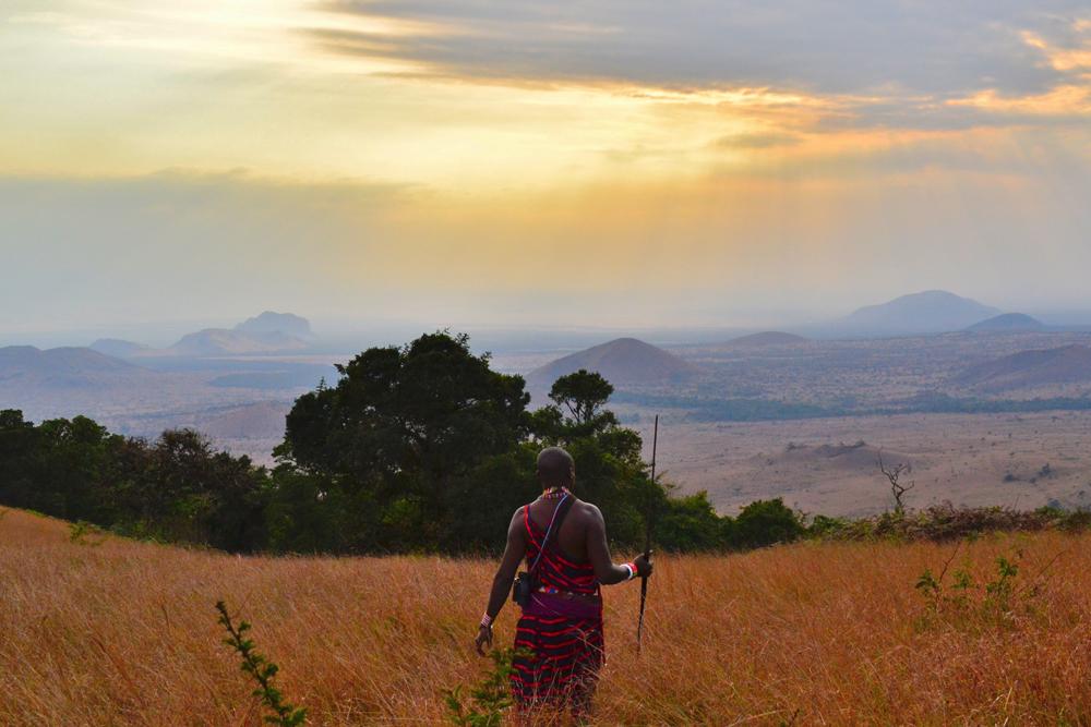 kenya, africa, desert, sunset
