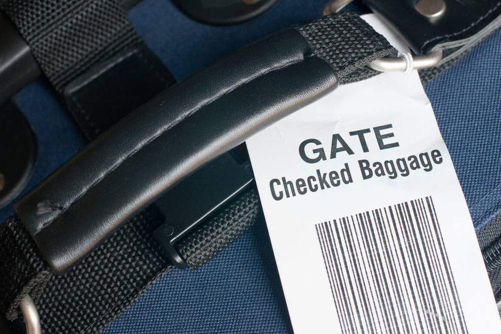 Why Pay United Checked Baggage Fees When Young Passengers
