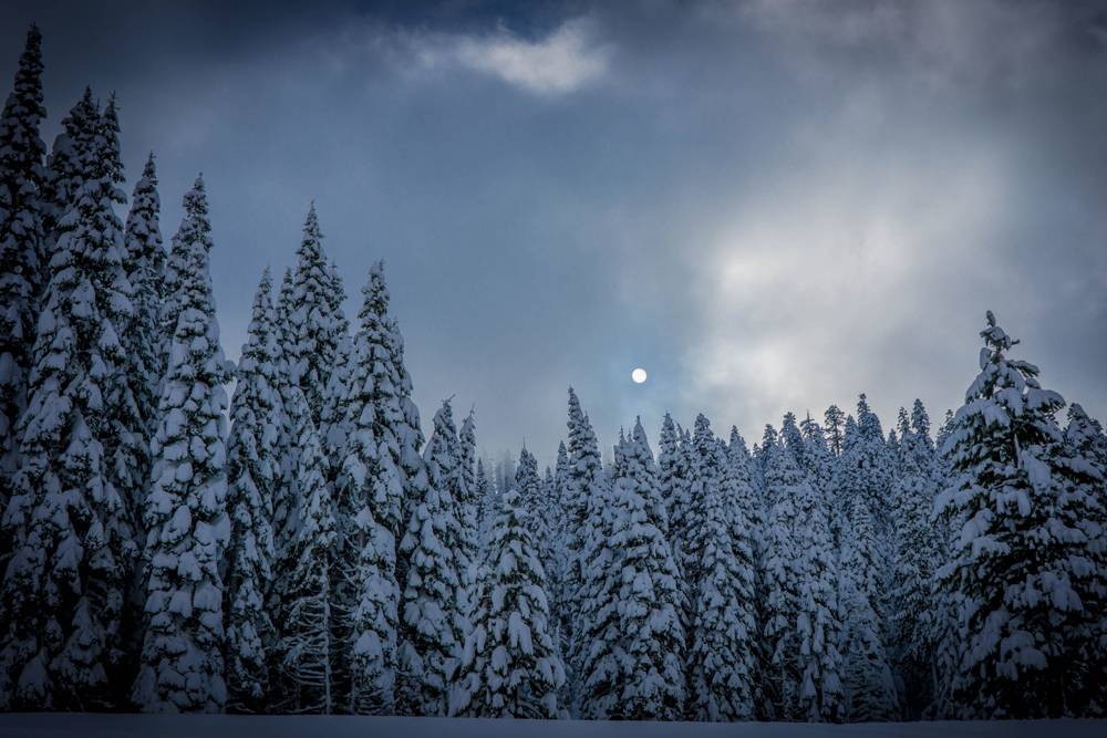squaw valley, alpine, ski, resort, skiing, snow, summer